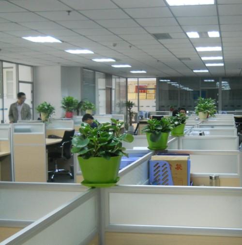 办公室家具屏风卡位搭配绿色盆栽展示图